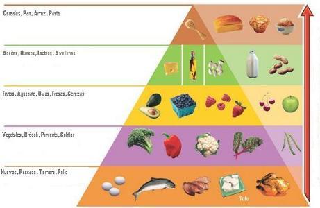 20071222-piramide-nutricional-de-alimentos-dieta-atkins-2