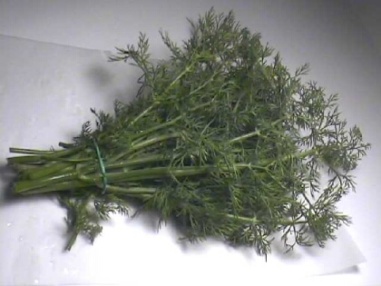 Eneldo, una hierba poderosa en la cocina