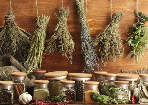 secar-hierbas