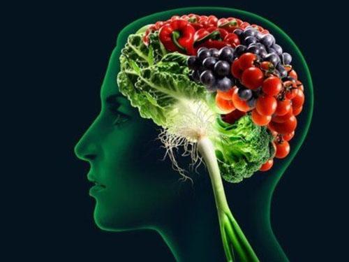 comida-y-cerebro